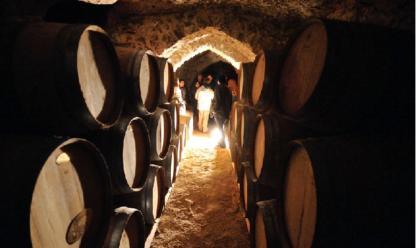 plek waar biologische rode wijn Verano Acrata wordt opgeslagen in ribera del duero
