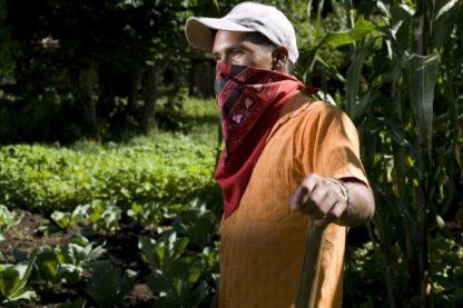 zapatista koffieboer op zijn democratische eerlijke en duurzame koffieplantage