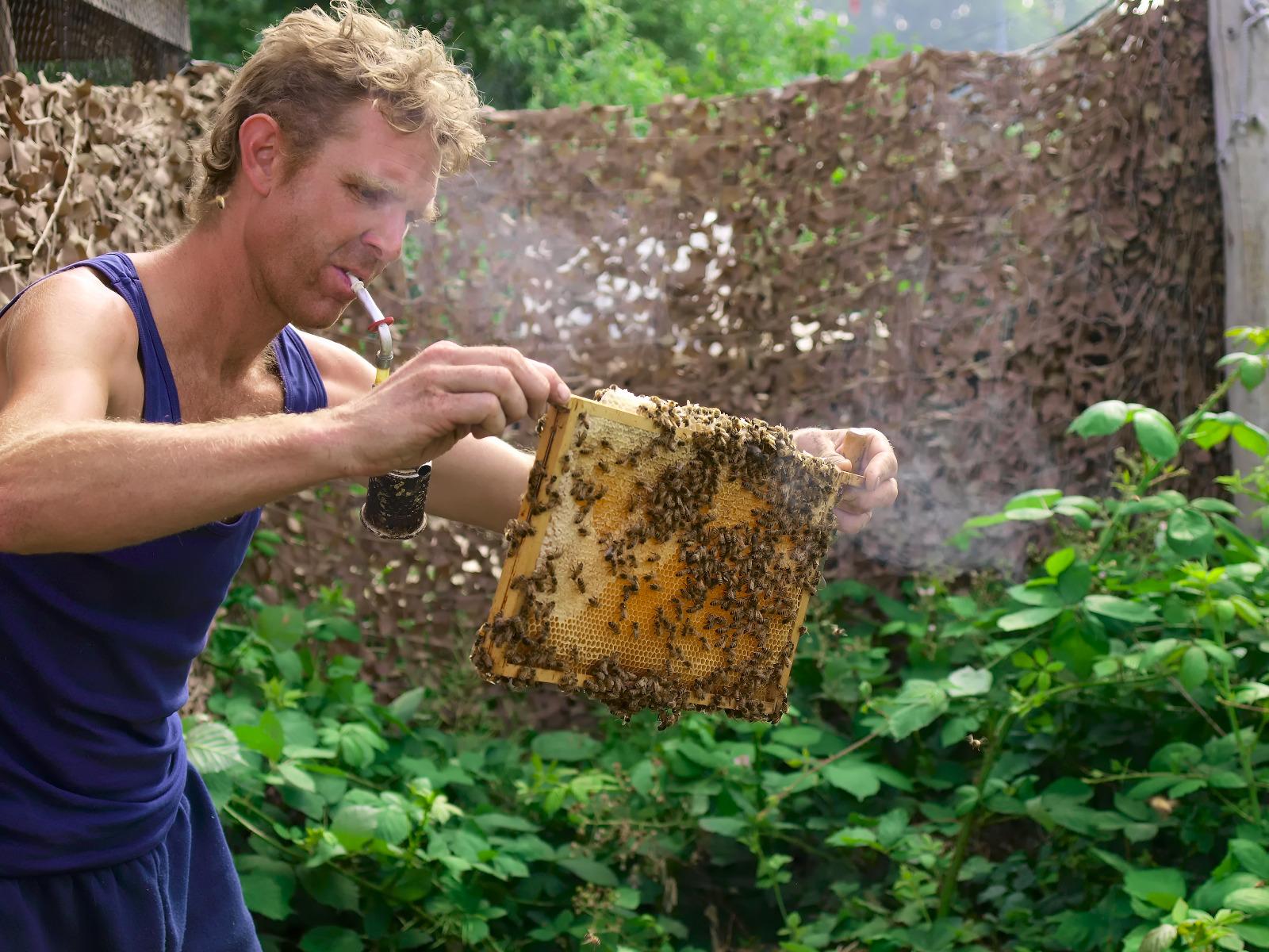 imker Ronald produceert lokale amsterdamse honing